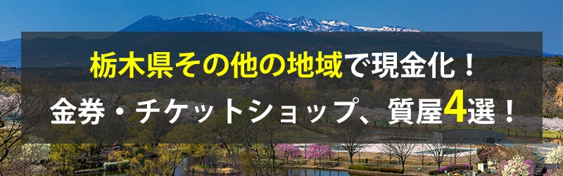 栃木県その他の地域で現金化!栃木県その他の地域の金券・チケットショップ、質屋4選!
